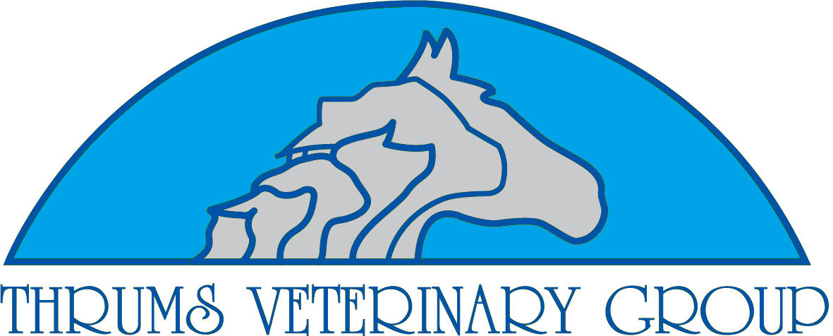 Thrums Veterinary Group